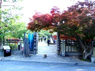 秋は赤橙黄緑青の彩_2