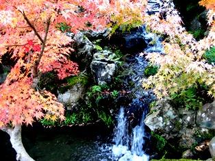 秋は赤橙黄緑青の彩_7