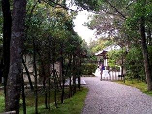秋篠文化ロマン紀行in奈良(秋篠の細道)_9