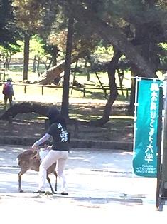 奈良の近代和風建築探訪_7