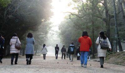 奈良は冬もいい!!_5