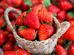 奈良の雅なイチゴ「古都華」を味わおう!!_1