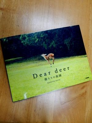 Dear deer 鹿たちの楽園_10