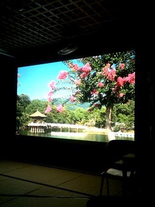 365日、奈良を感じる_3