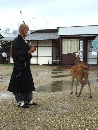 僧侶の装い_3