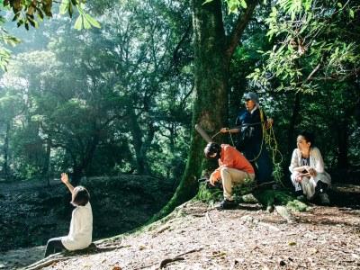 奈良に800席を有する映画館_3