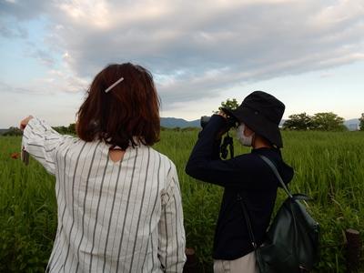 奈良の面白さ教える