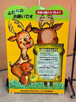 奈良公園の鹿に思いを馳せる
