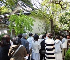 和スイーツの原点は奈良にあり!1