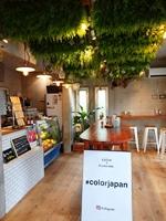 ひとまちの街 生搾りサワー専門店「color」