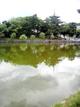 ひとまちの街 猿沢池