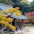 ひとまちの街 正暦寺