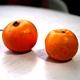 幻の柑橘「大和橘」って?