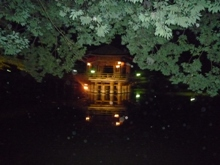 ひとまちレポート 奈良のいろんな味わい方_6
