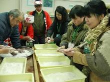 ひとまちレポート お餅つきで日本の伝統文化を体感_18