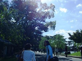 ひとまちレポート 奈良を写さずに奈良を写す_6