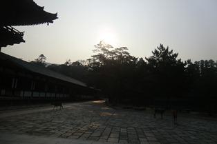 泊まりで授業!奈良の夜、奈良の朝_10