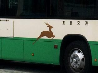 軽やかで逞しい、バスの世界の奥深さ_9