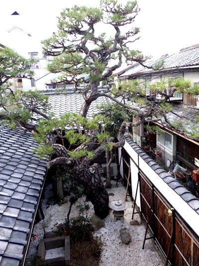 奈良の魅力がつまった出会い