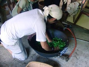 ひとまちレポート お茶摘みは重労働でも充実感たっぷり_5